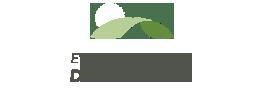 Logotipo del Evento de ventas de primavera